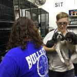 Whiskers Nails and Puppy Dog Tails employees caring for pets